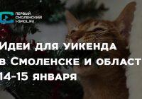 Идеи для уикенда в Смоленске. 14-15 января