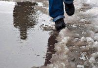 Смоляне проводят зиму дождём и мокрым снегом