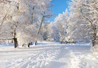 В Смоленске ударили морозы