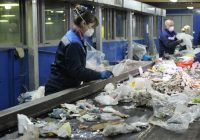 Смоленский мусор начали сортировать