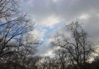 В понедельник в Смоленске будет облачно с прояснениями