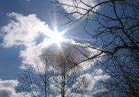 23 марта в Смоленске будет солнечно