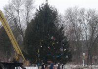 Главную ёлку Сафонова убрали в первый день весны