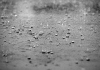 Пасмурная пятница принесет смолянам дожди