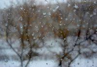29 марта циклон вернет Смоленск в зиму
