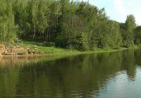 Летом 2017 года запретят купание в Реадовском озере