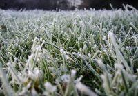 Во вторник в Смоленске потеплеет до 6 градусов