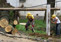 Городские службы Смоленска приведены в режим повышенной готовности