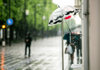 Дождливую среду обещают смолянам синоптики
