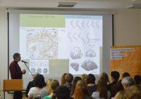 Археологи будут исследовать южную часть Соборного холма в Смоленске