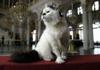 В Смоленске пройдет Международный День музеев