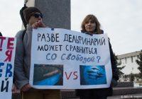 «Нет жестоким развлечениям!» — в Смоленске пройдет пикет против передвижного дельфинария