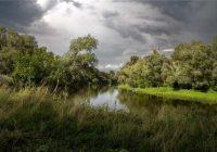 В четверг в Смоленске сохранится прохладная погода