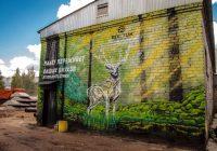 Очередное эко-граффити появилось в Смоленске