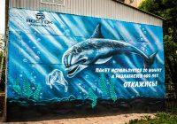 В центре Смоленска появилось граффити с эко-призывом