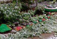 Летний снег. В Смоленскую область вернулась зима