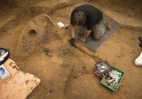 Археологи обнаружили в Гнёздове деревянный щит