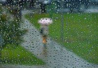 Последняя пятница июля будет дождливой и жаркой