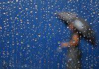 В понедельник в Смоленске снова дожди