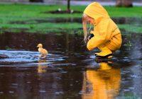 Во вторник в Смоленске пройдут кратковременные дожди