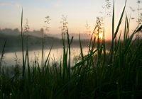 6 июля в Смоленске будет облачно с прояснениями