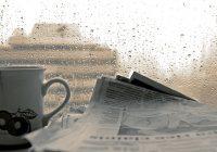 В понедельник в Смоленске будут идти сильные дожди