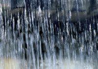 Новая неделя принесла в Смоленск затяжные дожди