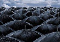 В Смоленске снова ожидаются дожди