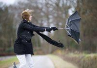 На Смоленск обрушится шквалистый ветер