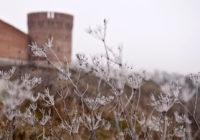 Сегодня в Смоленске ожидается мороз и солнце