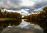 Новый парк в «Соловьиной роще» должен появиться меньше чем через год