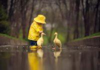 Сегодня в Смоленске ожидается небольшой дождь