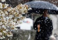 В среду смолян снова ожидает мокрый снег с дождём