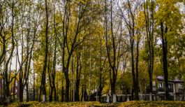 В Смоленске за «Октябрём» построят детскую площадку
