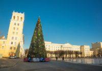 В Смоленске к празднику на площади Ленина установят новую ёлку
