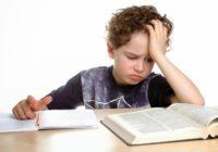 В Смоленске школы подключают к «Электронным дневникам»