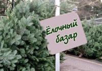 Где в Смоленске можно купить новогоднюю ель