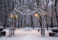 Сегодня в Смоленске будет снежно