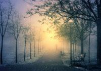 В Смоленске запускают «нетривиальные» экскурсии