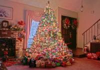Когда лучше убирать новогоднюю ёлку?
