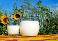 С сегодняшнего дня в Россию запрещён ввоз белорусского молока и молочных продуктов