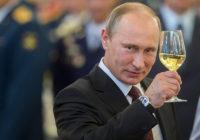 Владимир Путин побеждает на выборах Президента России: актуальные данные по Смоленской области
