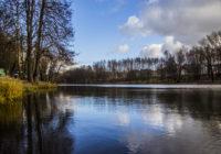 В Смоленске приступили к созданию парка в Соловьиной роще