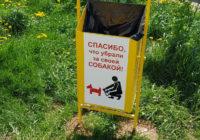 Смоленских собачников просят убирать за своими четвероногими
