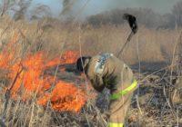 В Смоленской области продолжает гореть сухая трава