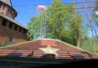В Смоленске высадили 6,5 тысяч бегоний