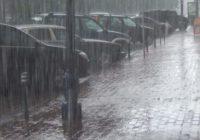 МЧС предупреждает о порывистом ветре и ливнях