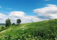 Идеи для уикенда в Смоленске. 1 – 3 июня