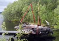 В Гагаринском районе пройдёт поисковая операция на месте крушения Ил-2