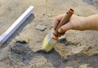 Гнёздовский ритуальный комплекс превратят в музей